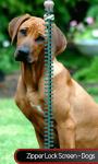Zipper Lock Screen – Dogs screenshot 1/6
