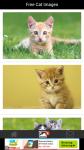 Free Cat Images screenshot 2/6
