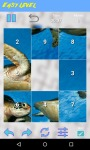 Turtle Jigsaw Puzzle FREE screenshot 3/5