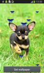 Cute Puppy Live Wallpapers screenshot 2/6