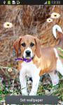 Cute Puppy Live Wallpapers screenshot 3/6