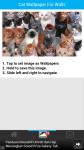Cat Wallpaper For Walls screenshot 3/6