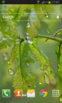 Drops Leaves LWP Free screenshot 2/2