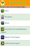 Benefits of Celery screenshot 2/3