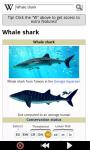 Sharks : Ocean Wild Animals screenshot 5/6