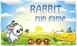 Rabbit Run Game screenshot 1/2