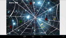 Spider preys on fly screenshot 1/4