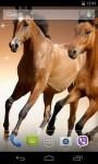 Horses Live Wallpaper 3D parallax screenshot 2/4