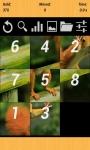 Puzzle Challenge Game screenshot 1/4