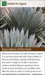 Herbs Encyclopedia screenshot 2/4