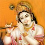 Krishna Zone screenshot 1/4