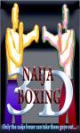 Naija Boxing 3D_ screenshot 1/3