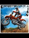 Moto Race 3D GP screenshot 2/3