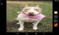 Funny Dogs Wallpaper screenshot 2/4