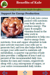 Benefits of Kale screenshot 4/4