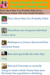 Facts About Bees You Probably Didnt Know screenshot 2/3