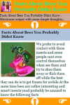 Facts About Bees You Probably Didnt Know screenshot 3/3