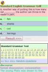 Standard English Grammar Grill screenshot 2/3