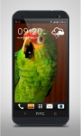 Green Parrot Live Wallpaper screenshot 1/3