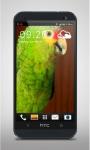 Green Parrot Live Wallpaper screenshot 2/3