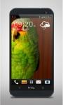 Green Parrot Live Wallpaper screenshot 3/3