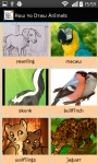 How to Draw Animals Step by Step screenshot 1/4