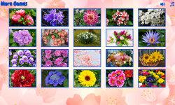 Big puzzles flowers screenshot 2/6