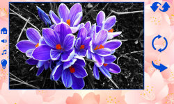Big puzzles flowers screenshot 3/6