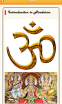 Hinduism Basics screenshot 1/1