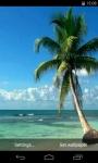 Palm Tree Video Live Wallpaper screenshot 1/4