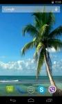 Palm Tree Video Live Wallpaper screenshot 2/4