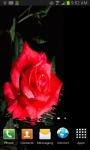 Red Rose free screenshot 2/3