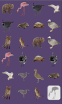The Animals Memory Game screenshot 3/4