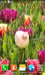 Tulips Live Wallpapers Best screenshot 3/6