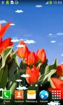 Tulips Live Wallpapers Best screenshot 4/6