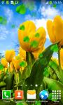 Tulips Live Wallpapers Best screenshot 6/6