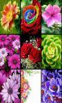 Flowers Brain Game screenshot 3/3