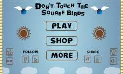 Dont Touch The Square Birds screenshot 1/5