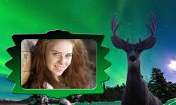 Wildlife Photo Frames screenshot 4/6