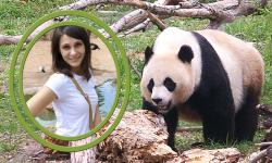 Wildlife Photo Frames screenshot 5/6