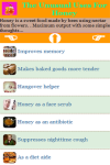 The Unusual Uses For Honey screenshot 2/3