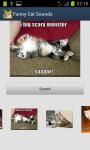 Funny Cat Sounds screenshot 3/4