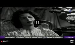 Arabic TV Live screenshot 5/5