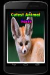 Cutest Animal Facts screenshot 1/3