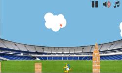 Run to World Cup 2014 screenshot 3/3