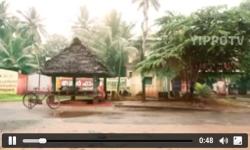 Yippo Malayalam TV screenshot 2/6