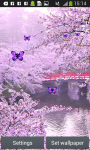 Sakura Live Wallpapers Free screenshot 3/6