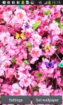 Sakura Live Wallpapers Free screenshot 4/6