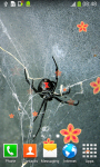 Spider Live Wallpapers Free screenshot 2/6