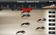Greyhound Bet screenshot 4/5